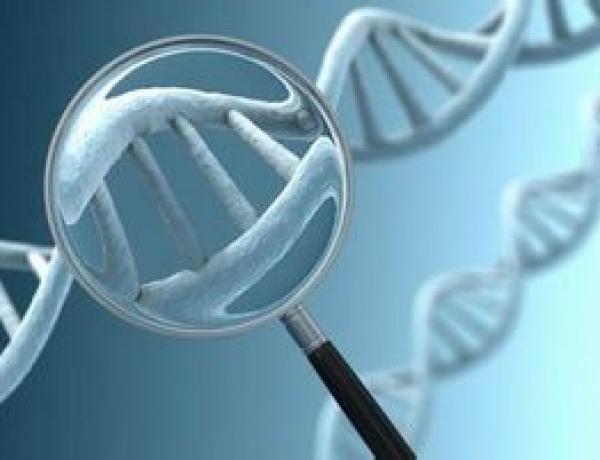 การตรวจคัดกรองโครโมโซมลูกน้อย ด้วยเทคโนโลยี NIPT